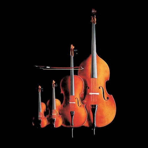 Mario Cucinella Design woody
