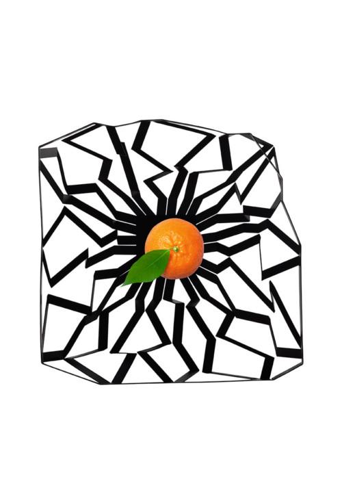 Mario Cucinella Design Oas